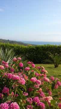 Bed and Breakfast Colle Selvotta Vasto - Il giardino