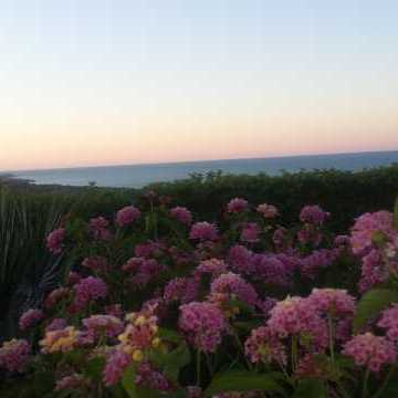 Bed and Breakfast Colle Selvotta Vasto - Il panorama