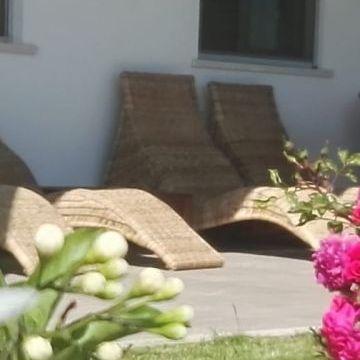 Bed and Breakfast Colle Selvotta Vasto - Garden